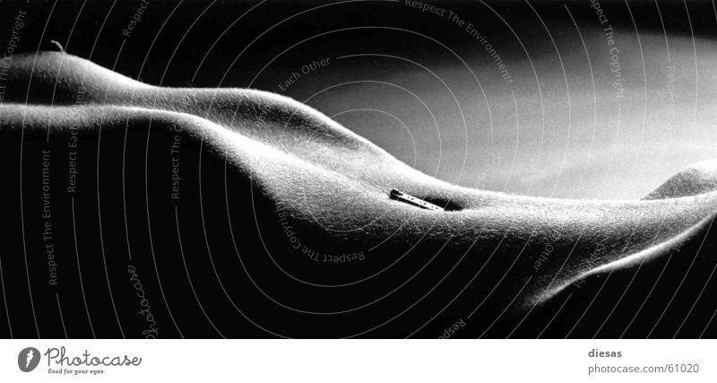 Zip curves Frau Akt Erotik nackt Körper Haut Brust Bauch Kurve Piercing Rippen Bauchnabel Hüfte Schwarzweißfoto