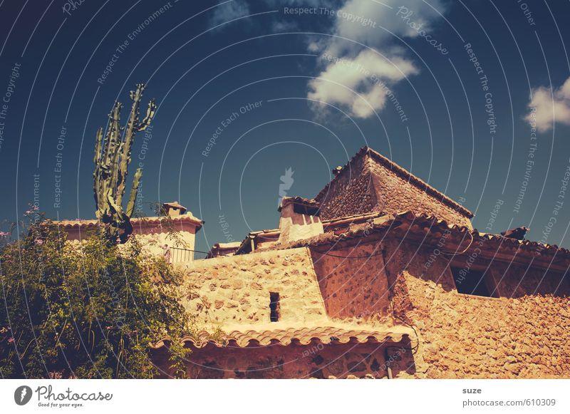 Alles nur Fassade | in Mexiko Himmel Natur Ferien & Urlaub & Reisen alt Pflanze Einsamkeit Haus Fenster Umwelt Wärme Wand Gebäude Architektur Mauer trist