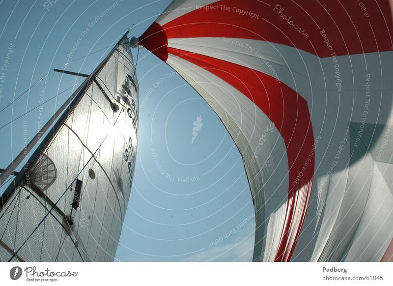 Segeln pur Wassersport Luft Licht Abenteuer segeln auf dem ijsselmeer gennaker bunte segel hohe geschwindigkeit Sonne gutes gefühl Wind streicht um die nase