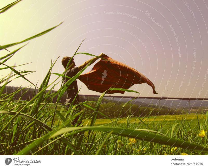 Flieg nicht zu hoch (mein kleiner Freund) Mensch Mann Himmel Sonne Blume Freude Wiese Stil Blüte Gras Frühling Landschaft Wind fliegen Brücke Flügel
