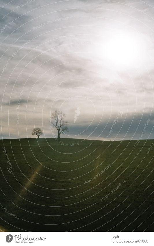 Schattenspiel mit Sonne und Wolken weiß Baum grün Wiese Nebel Hügel