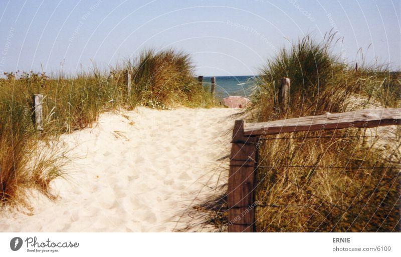 Boah...mehr meer sehn Wasser Himmel Sonne Strand Ferien & Urlaub & Reisen Gras Holz Wärme Sand Wellen Physik Regenschirm Stranddüne Draht Pfosten