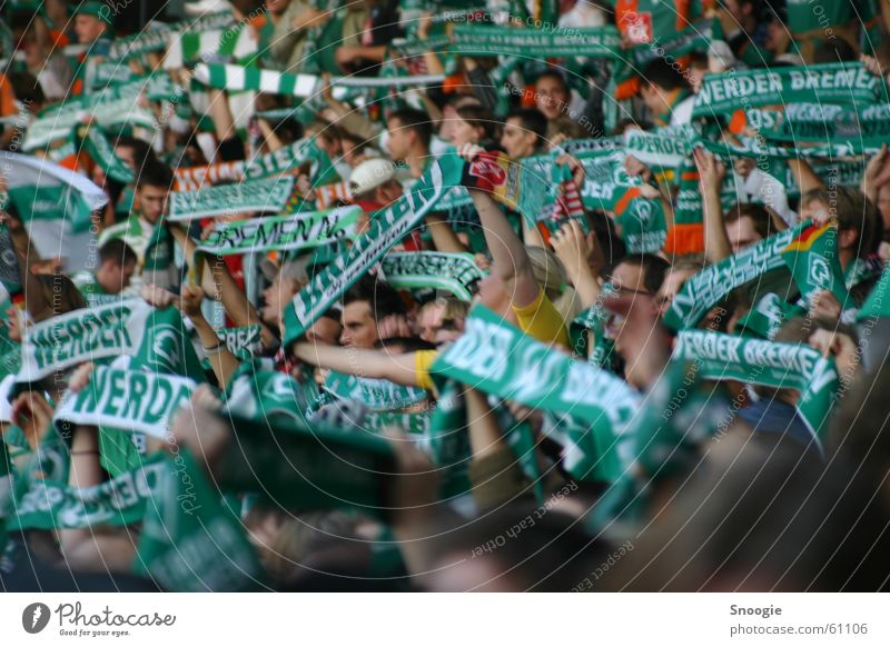 fankurve weiß grün Freude Gefühle Fan Schal Bremen Brandenburg Werder Havel