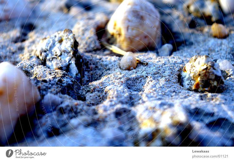 Steine Sonne blau Strand Ferien & Urlaub & Reisen Erholung Stein Sand Graffiti Erde trist nah Bodenbelag karg