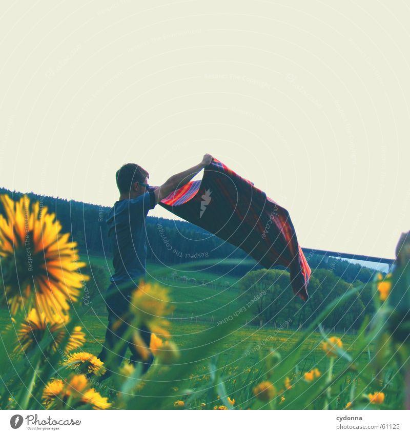 Flieg nicht zu hoch (mein kleiner Freund) I Mensch Mann Himmel Sonne Blume Freude Wiese Stil Blüte Gras Frühling Landschaft Wind fliegen Brücke Flügel