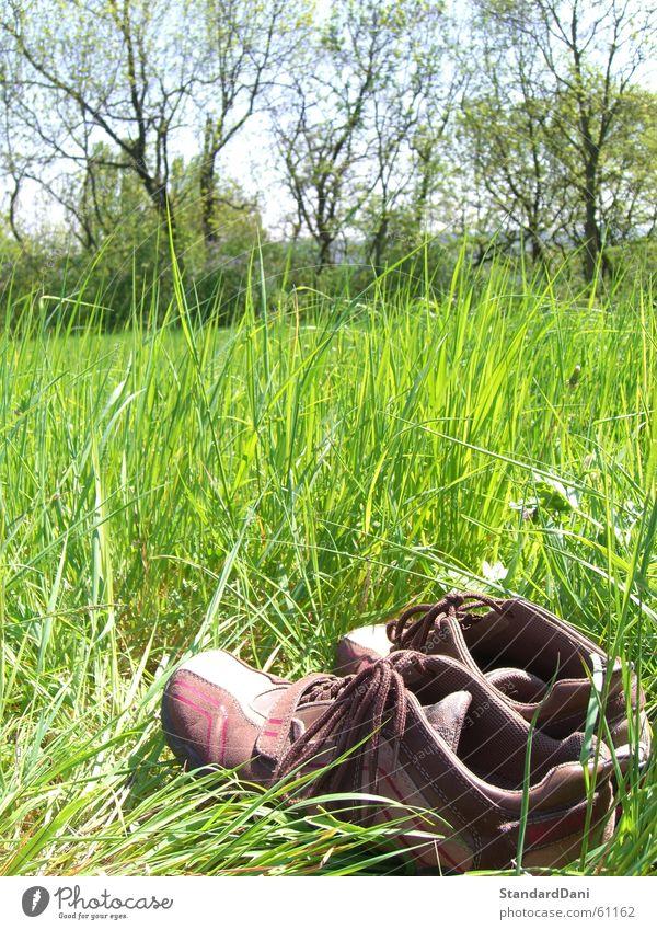 Aussteigen Wiese lüften Gras grün resignieren Schuhe Erholung ruhig Einsamkeit Rasen schweigen Sportrasen Sommer Bekleidung Natur müßiggang Weide