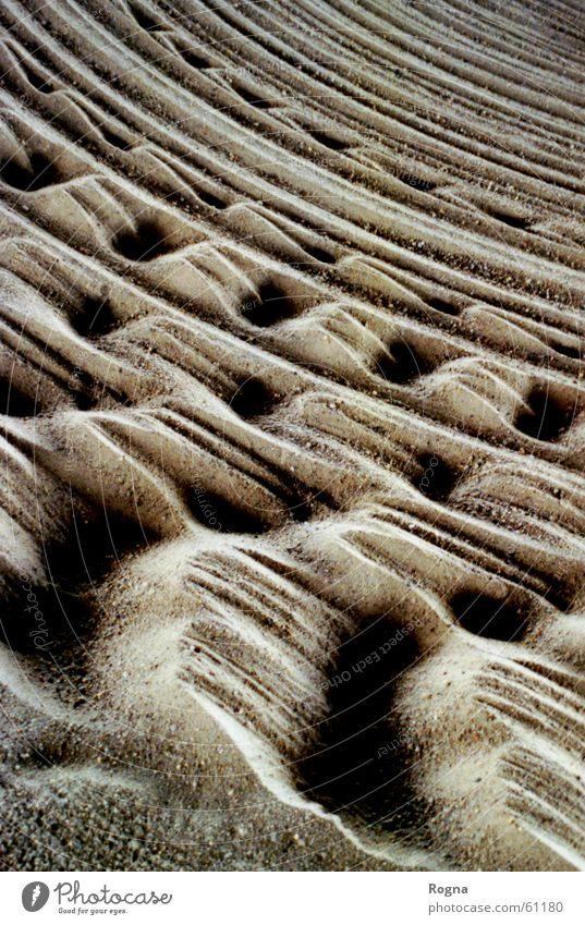 Sandsturm Ferien & Urlaub & Reisen Bewegung Stein Sand Kreis Wüste Furche kratzen
