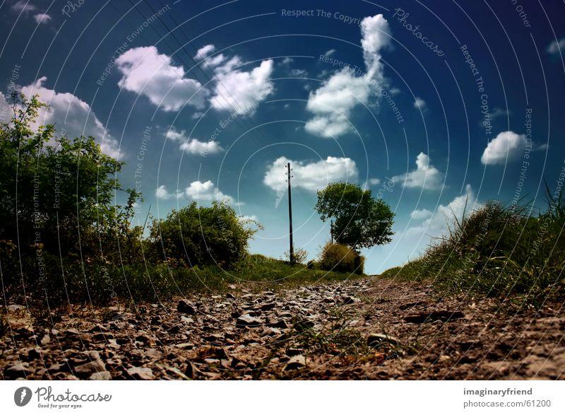 landschaft Länder Wolken Baum Strommast Gras Sommer Himmel country Landschaft Wege & Pfade