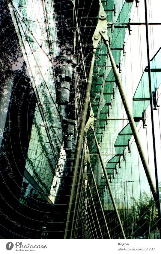 Modern Nature Spiegel Fenster Fassade Gewächshaus Gitter Stab spieglung window Trennung modern metallstruktur Baugerüst Architektur