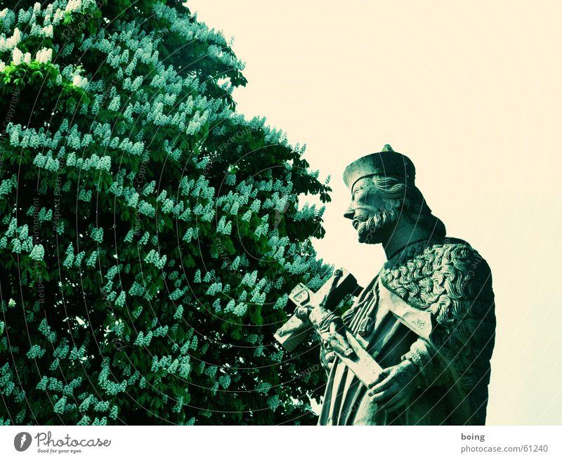 Nepomuk von der Brücke Statue Fluss Kruzifix Christliches Kreuz Religion & Glaube Bildhauer Kastanienbaum Gotteshäuser Kunst Kultur schutzpatron blühender baum