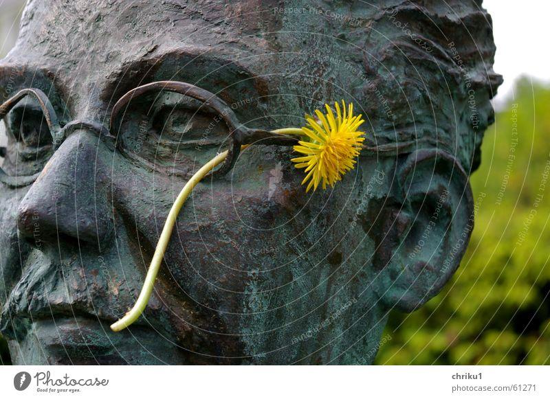 Dr. Löwenzahn Mann Natur Blume Pflanze Gesicht gelb kalt Kopf Metall Brille Ohr Löwenzahn bewegungslos Oberlippenbart Bronze Büste