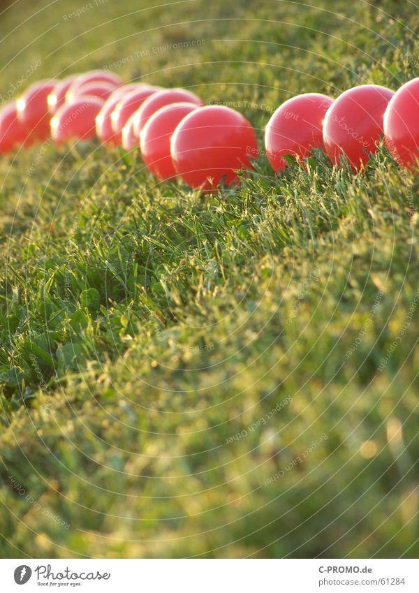 Invasion der roten... grün rot Wiese Gras Kunst Ball Rasen