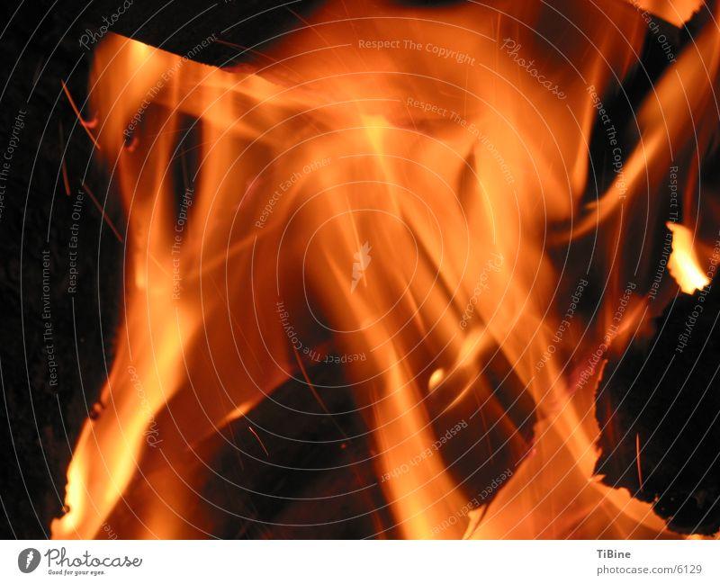 Feuer Holz brennen Makroaufnahme Nacht Grillen Brand