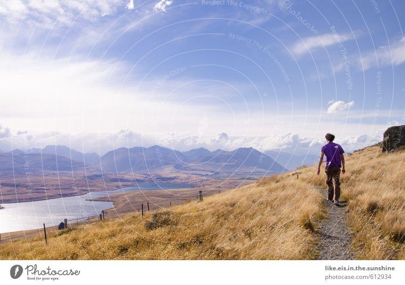 als columbus neuseeland entdeckte Natur Jugendliche Ferien & Urlaub & Reisen Mann schön Sommer Einsamkeit Landschaft ruhig Ferne Junger Mann Erwachsene