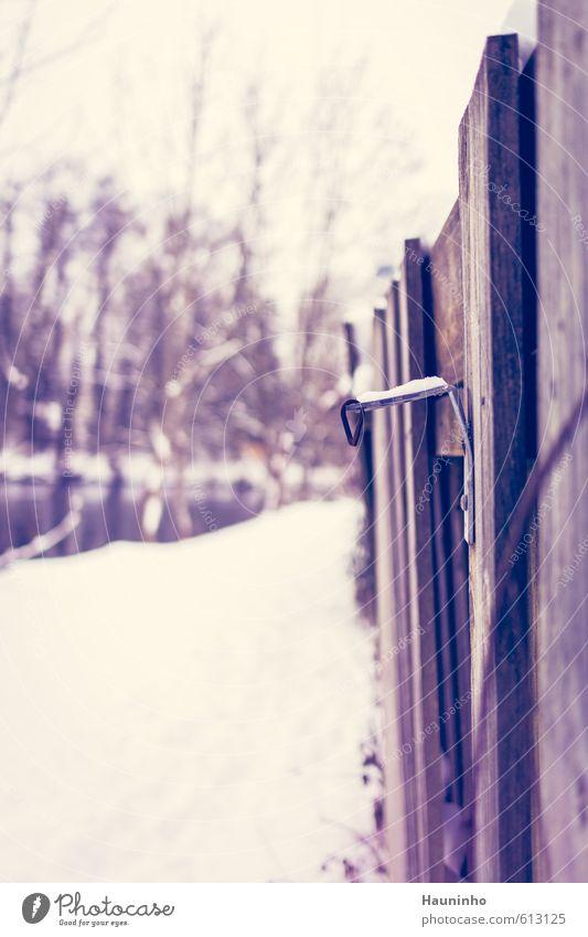 Winterhaken Natur Schnee Fürstenfeldbruck Menschenleer kalt trist weiß Metallwaren Holzbrett Holzzaun Ecke Schraube Freistellung Farbfoto Außenaufnahme
