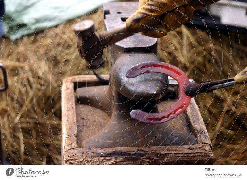 glühendes Hufeisen Pferd Werkstatt Handwerk Hammer Werkzeug Handwerker glühend Hufeisen Schmiede Amboss Hufschmied