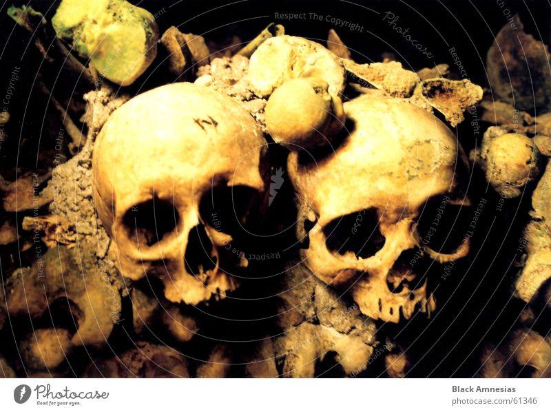 Memento Mori 2 groß Macht Paris Eingang Skelett Schädel Grab Friedhof Katakomben Grabkammer