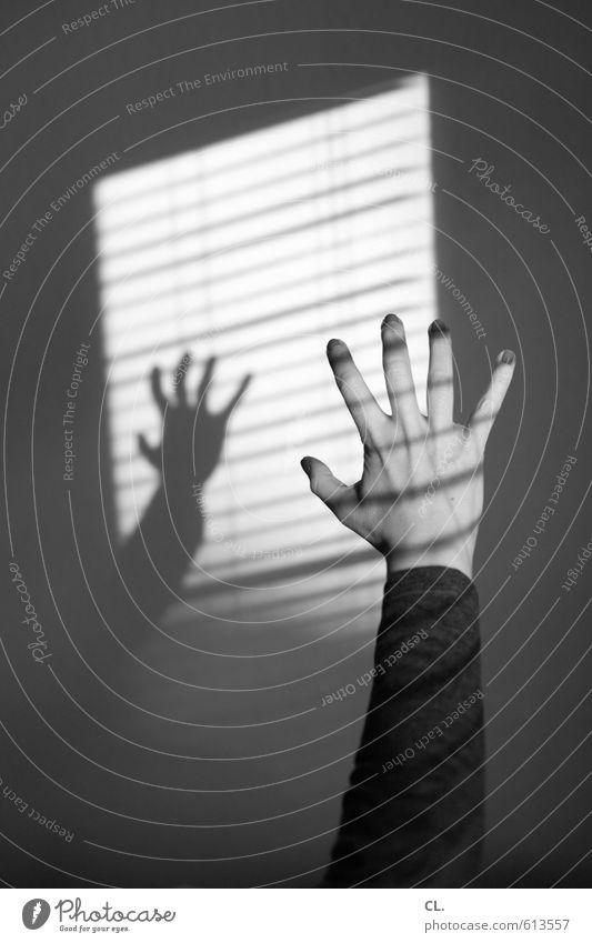 kralle Mensch Frau Jugendliche Hand Einsamkeit Junge Frau 18-30 Jahre Erwachsene Fenster Wand feminin Mauer Angst Wohnung Raum Häusliches Leben