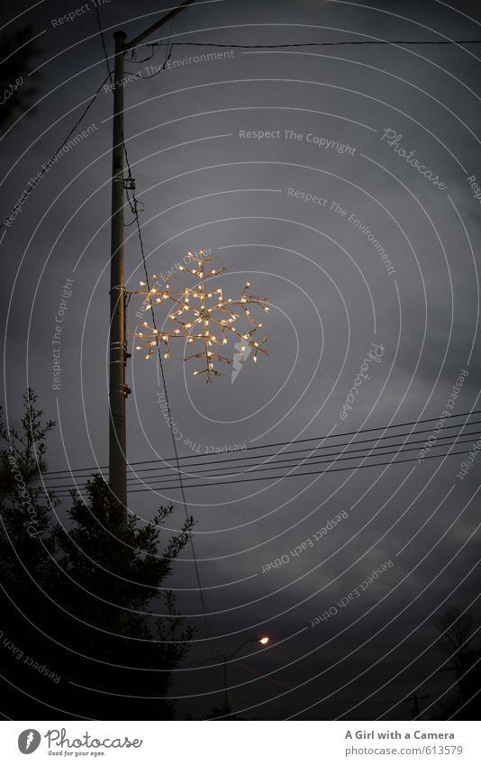 das Fest der Liebe Zeichen dunkel Weihnachten & Advent Dekoration & Verzierung Fernschreiber Hochspannungsleitung Traurigkeit Lustlosigkeit Weihnachtsdekoration