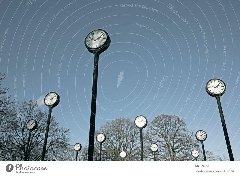 uhrwald Himmel Baum Umwelt Zeit Kunst Park Uhr groß Vergänglichkeit Wolkenloser Himmel Vergangenheit Baumkrone Stress Urwald Stundenzeiger Gegenwart