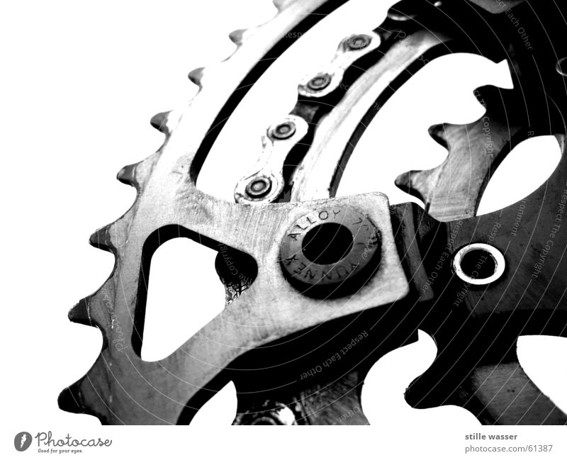 Kettenblatt schwarz weiß Fahrrad Fahrradkette ritzel Zahnrad