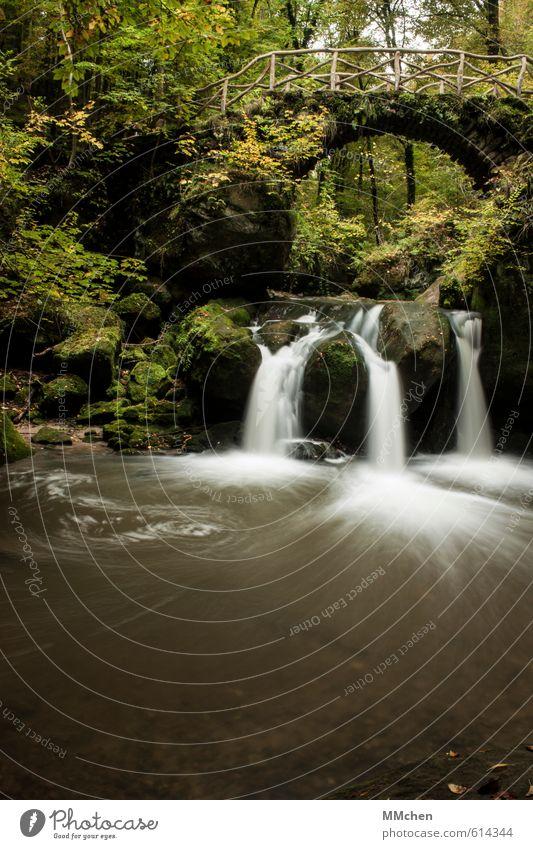 MärchenWald Natur Ferien & Urlaub & Reisen Wasser Erholung Herbst Bewegung Sport Schwimmen & Baden Stein Felsen Freizeit & Hobby Tourismus wandern Ausflug