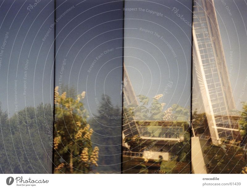 Baumschule Himmel Baum grün blau Blatt Haus Stil Fenster Gebäude verrückt Dach Ast Schüler Baumstamm Doppelbelichtung old-school