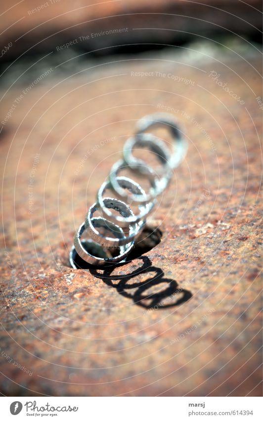 Total abgedreht :-) Metallbearbeitung Metallfeder Metallwaren Kunst Kunstwerk Stahl Rost Spirale Drehspan Späne Eisenspäne drehen stehen werfen außergewöhnlich