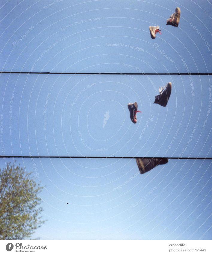 chucks in freier wildbahn Chucks Baum Schuhe Luft Lomografie Himmel blau fliegen Turnschuh