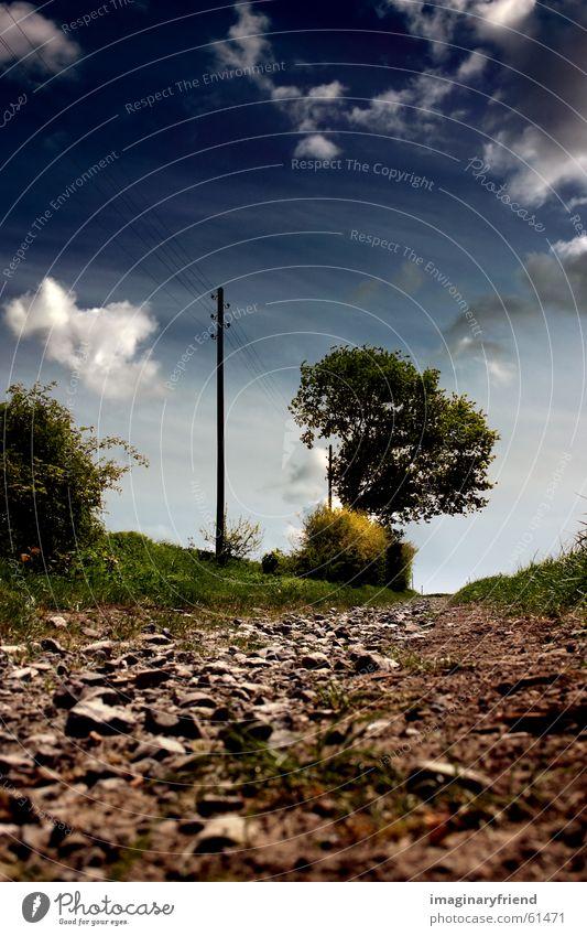landschaft II Natur Himmel Baum Sommer Wolken Wiese Gras Wege & Pfade Feld Länder Strommast Kies