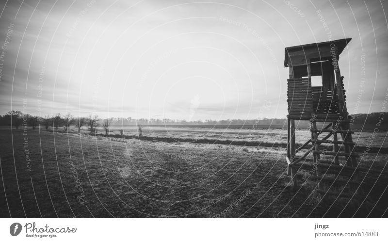 soweit das Auge reicht Landschaft Horizont Sonnenlicht Herbst Winter Schönes Wetter Gras Feld Hochsitz Blick warten alt groß Unendlichkeit Neugier schwarz weiß
