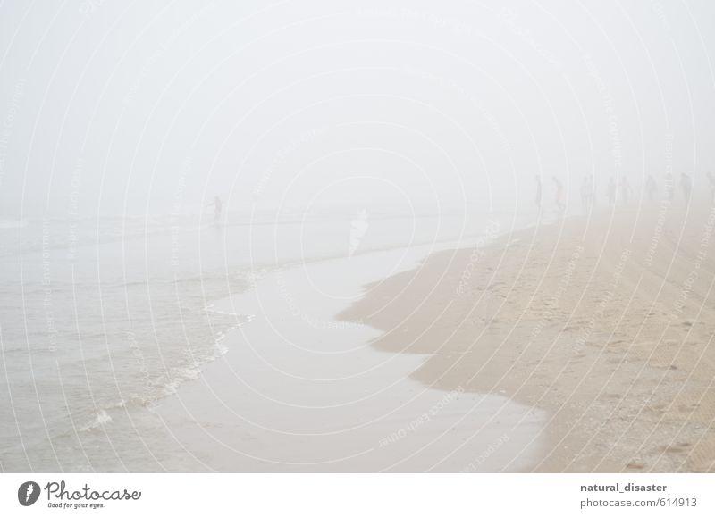 Menschen am Meer im Nebel. Ausflug Abenteuer Ferne Strand Menschengruppe Küste Schwimmen & Baden laufen rennen sportlich verrückt braun weiß Freude Tapferkeit