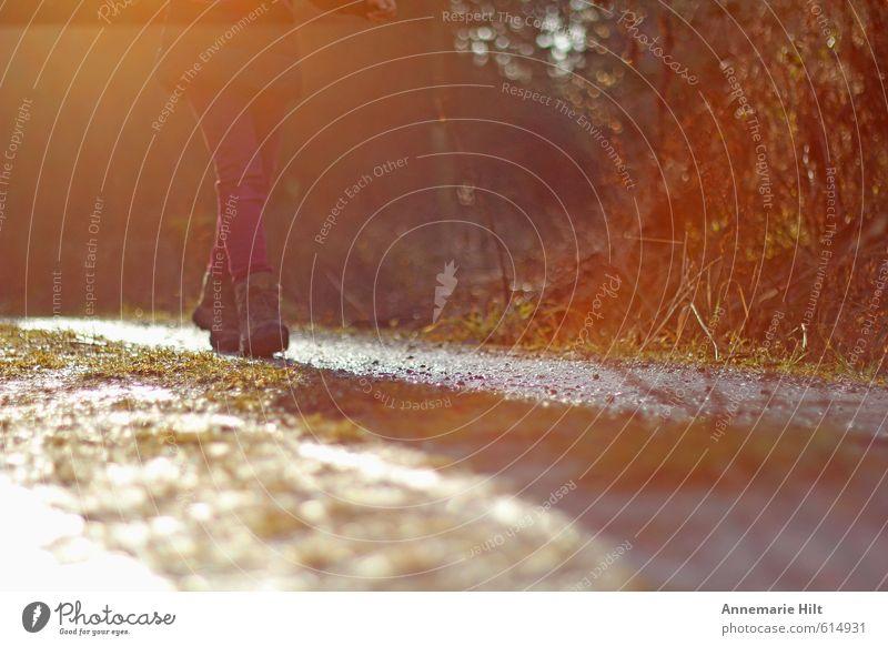 Waldspaziergang feminin Mädchen Junge Frau Jugendliche Leben Beine 1 Mensch Bewegung Erholung gehen laufen Freundlichkeit Fröhlichkeit frisch dünn Farbfoto