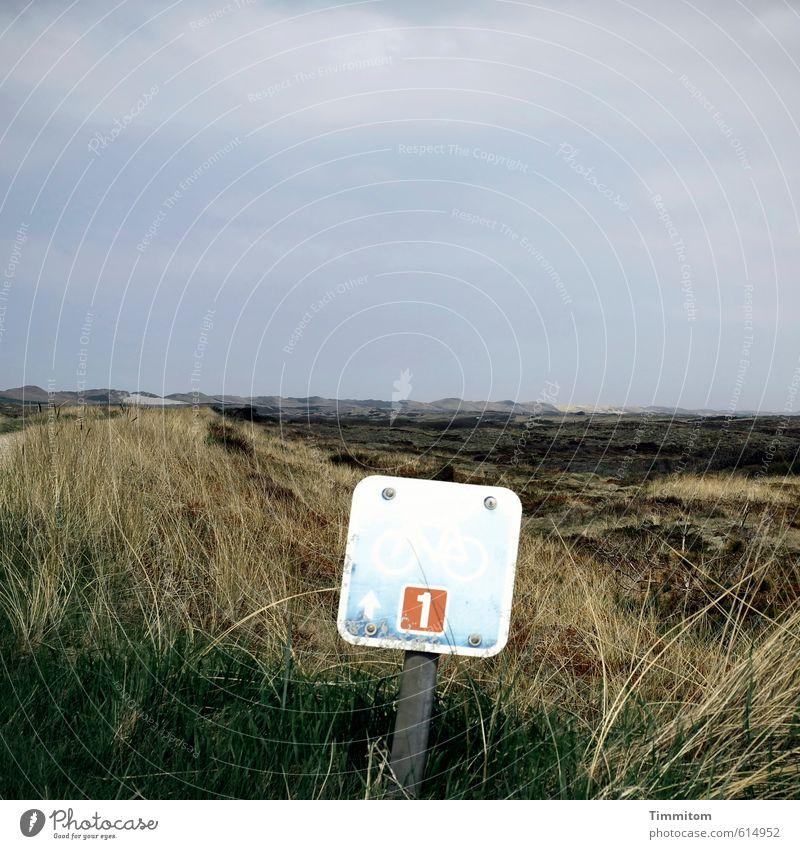 Nr. 1 Ferien & Urlaub & Reisen Fahrradfahren Umwelt Natur Landschaft Pflanze Stranddüne Dänemark Wege & Pfade Fahrradweg Ziffern & Zahlen