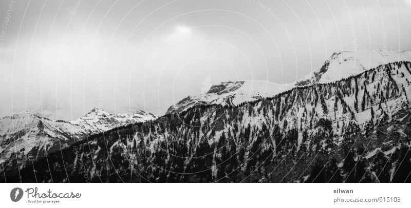Berner Himalaya Baum Einsamkeit Landschaft ruhig Wolken Winter Wald Umwelt Berge u. Gebirge Schnee hell Felsen Nebel Wind ästhetisch Abenteuer
