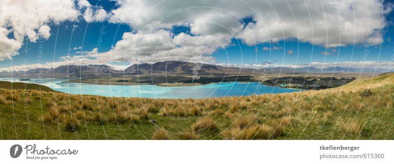 Lake Tekapo Neuseeland V Natur Ferien & Urlaub & Reisen blau Landschaft Berge u. Gebirge Reisefotografie Gras See Gipfel Alpen Seeufer Weide