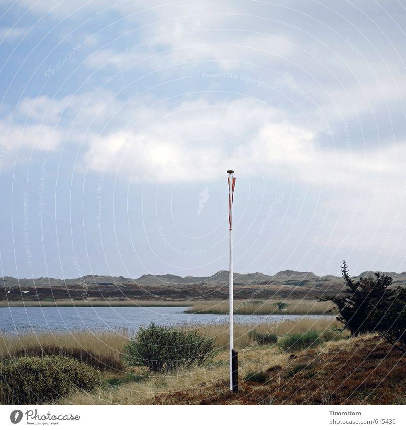 Flagge zeigen! Ferien & Urlaub & Reisen Natur Landschaft Wasser Himmel Wolken Schönes Wetter Gras Sträucher Nordsee See Dänemark Fahne Fahnenmast Sand hängen