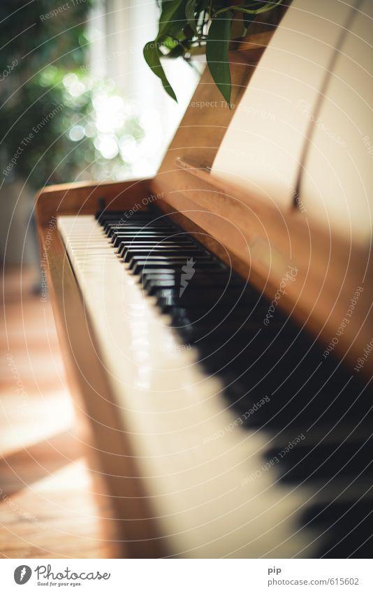 piano crescendo Klavier weich braun Häusliches Leben Klaviatur weiß schwarz Musikinstrument Unschärfe musizieren Tasteninstrumente Fluchtpunkt Farbfoto
