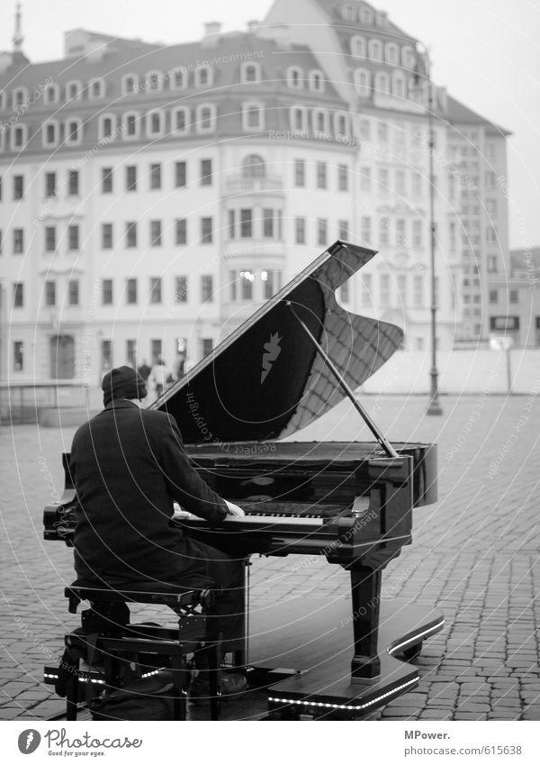 der pianist Mensch Mann Einsamkeit Haus kalt Erwachsene Spielen Körper Musik sitzen Platz Mütze Stadtzentrum Konzert Flügel Dresden