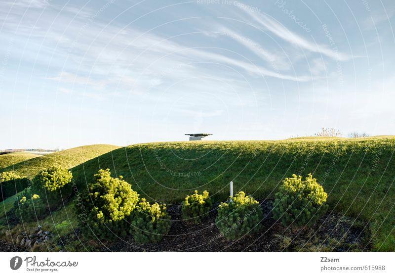 sonnenplatz Himmel Natur Ferien & Urlaub & Reisen blau grün Sommer Sonne Einsamkeit Erholung Landschaft ruhig Umwelt Wärme Wiese Freiheit Gesundheit