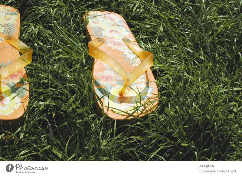 Flip-flops Flipflops Badelatschen Sommer Gras grün Blume liegen gelassen orange grass flower