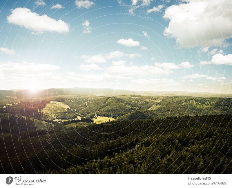 Thüringen Ahoi! Himmel Natur Ferien & Urlaub & Reisen Pflanze Erholung Landschaft ruhig Wolken Freude Tier Ferne Wald Umwelt Berge u. Gebirge Glück Freiheit