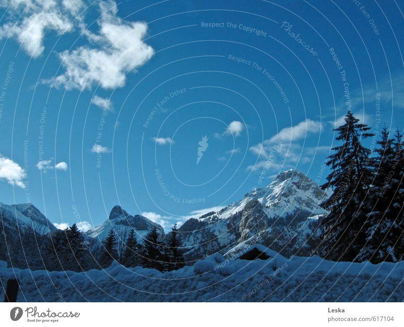 Bergwelten 1 Ausflug Winter Schnee Winterurlaub Berge u. Gebirge Landschaft Himmel Wolken Sonnenlicht Schönes Wetter Baum Alpen Gipfel Schneebedeckte Gipfel