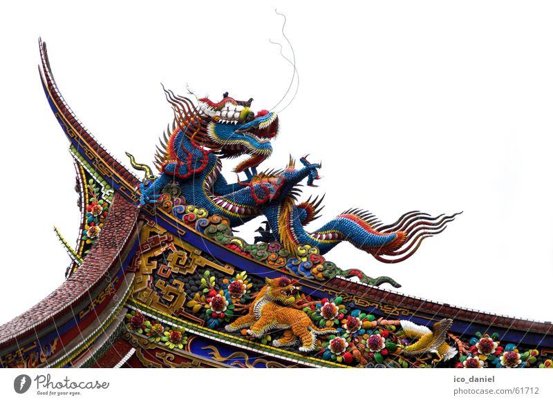 Drachen am Konfuzius Tempel in Taipeh I ruhig Kunst China Gebäude Sehenswürdigkeit Holz alt historisch mehrfarbig Religion & Glaube Taiwan Tiger Asien Republik