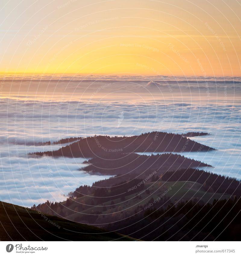 Wetter | Invers Umwelt Natur Landschaft Urelemente Himmel Wolkenloser Himmel Horizont Sonnenaufgang Sonnenuntergang Klima Klimawandel Schönes Wetter Nebel Wald