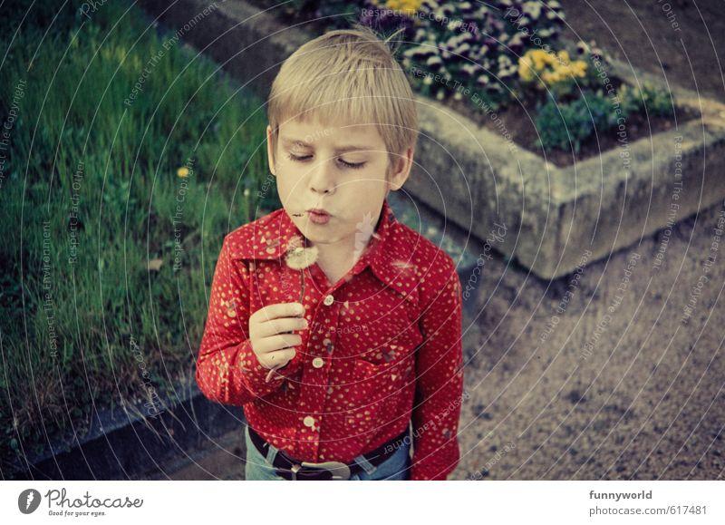 puuust puuust puuust! Junge Kindheit 8-13 Jahre retro Löwenzahn rot Siebziger Jahre Grab Tod Leben Farbfoto Außenaufnahme Textfreiraum rechts Vogelperspektive
