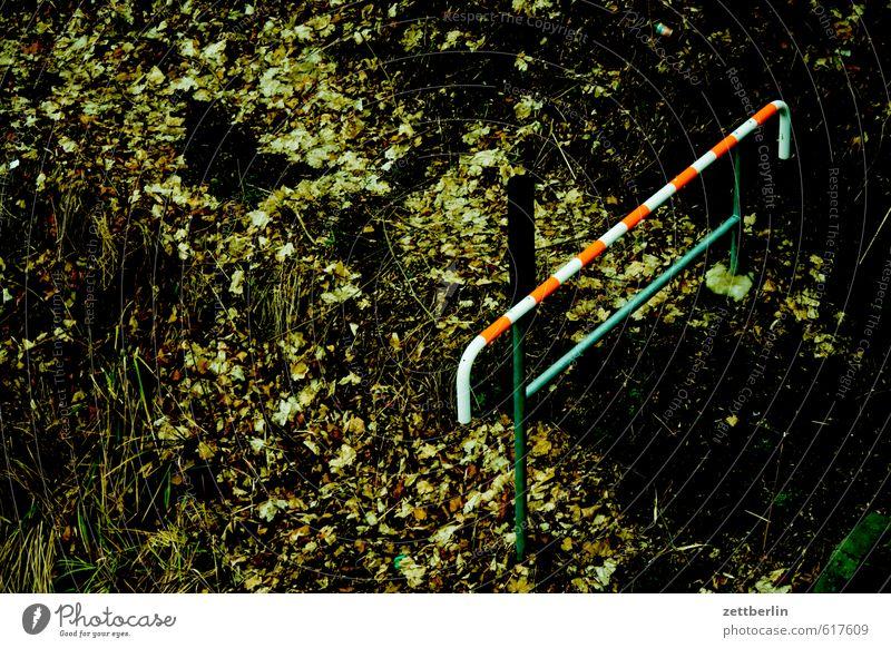 Durchgang verboten Umwelt Natur Pflanze Herbst Winter Wetter schlechtes Wetter Park Stadt Mauer Wand Verkehr Wege & Pfade Brücke Verkehrszeichen Verkehrsschild