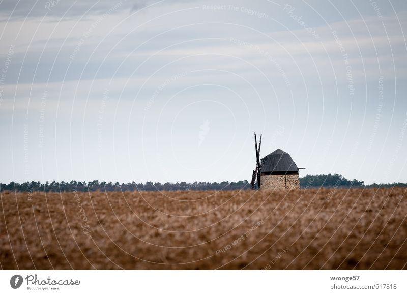 halbe Sachen | Halbe Mühle alt Ferne grau braun Deutschland Europa Industrie historisch Bauwerk Denkmal Windkraftanlage industriell Harz Mühle Windmühle Sachsen-Anhalt