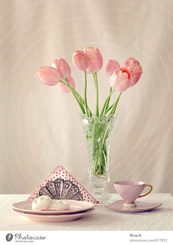 TeaTime Teigwaren Backwaren Teller Tasse Blume Tulpe Blühend hell lecker süß rosa Teetrinken Baiser Serviette Vase Blumenstrauß Stillleben Farbfoto