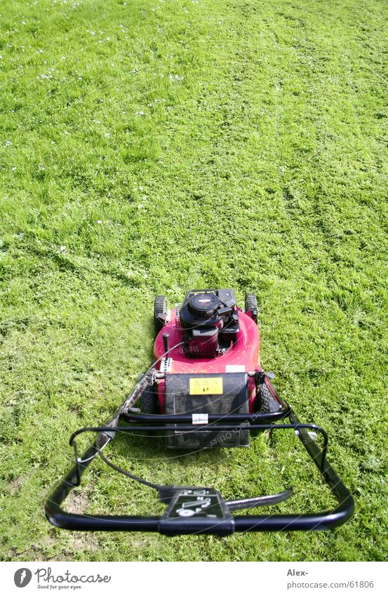 greif zu und gib GAS!!! Rasenmäher rosa Gras Wiese Sauberkeit Motor Arbeit & Erwerbstätigkeit Homosexualität Hebel Sommer drimmer Ordnung Gas Garten Schwuler